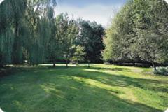 Mill_garden